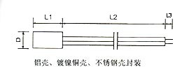 Stainless steel probe - Outline construction and dimensions